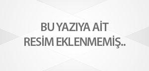 Yöresel Ürünler ve Zeytinyağı Festivaline üniversite de katıldı