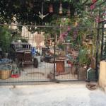 Lefkoşa, sokakta yatırlar ve bir antika bahçesi (2)