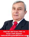M.Cemal Çiftçigüzeli